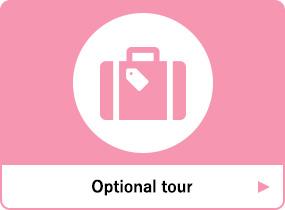 Optional Tour